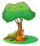 An animal taking a rest under a tree Stock Images