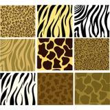 Animal textured Stock Photo