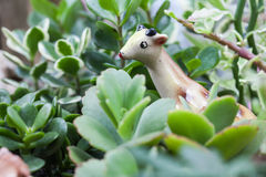 Animal toy in seasonal plant Stock Images