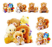 Animal toys. Stuffed animal toys  isolated on a white background Royalty Free Stock Photography