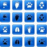 Animal track buttons. Collection of square blue rollover animal track buttons isolated on white Royalty Free Stock Image