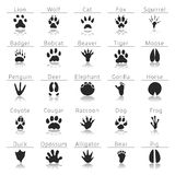 Animal track prints set. Paw prints art. Paw prints isolated image Stock Photo