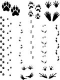 Animal Tracks 01. Paw prints and tracks of five different animals. Top Row Left to right: Dog, Wolverine, Raccoon. Bottom Row: Opossum, Frog Royalty Free Stock Photos