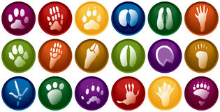 Animal tracks buttons royalty free illustration
