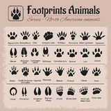 Animal Tracks - North American animals Royalty Free Stock Photography