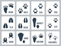 Animal tracks vector icons Stock Photography