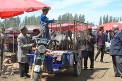 Animal traders at Uyghur Sunday Livestock bazaar market in Kashgar, Kashi, Xinjiang, China stock image
