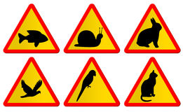 Animal traffic signs. 6 warning signs of different animals. Fish, snail, rabbit, dove, parrot and cat royalty free illustration