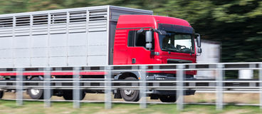 Animal transportation truck on highway speed blur. A animal transportation truck on highway speed blur Royalty Free Stock Photos
