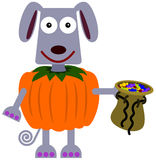 Animal trick or treat Royalty Free Stock Image