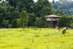 Animal view tower. At Kaoyai National Park, Thailand stock photo
