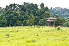 Animal view tower. At Kaoyai National Park, Thailand royalty free stock photos