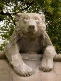 Animal Wall Bear Royalty Free Stock Images