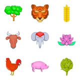 Animal of warm country icons set, cartoon style Stock Images