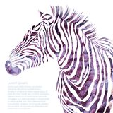 Animal watercolor illustration decorative Stock Images