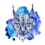 Animal on watercolor space Stock Photo