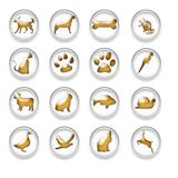 Gold Animal Web Icons Buttons Set Stock Photos