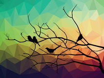 Animal of wildlife ( bird on tree branch and low poly vector background) Stock Photos