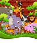 Animal wildlife cartoon. Illustration of cute animal wildlife cartoon Royalty Free Stock Images