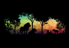 Animal of wildlife (Lion) low poly shadow vector design Royalty Free Stock Photo