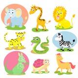 Animal wildlife set. The animal wildlife cartoon set Stock Photography