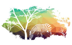 Animal of wildlife (zebra). Art design Stock Photo