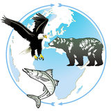 Animal world natural heritage. Protection Royalty Free Stock Images