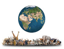 Animal of the world with planet earth royalty free stock photos