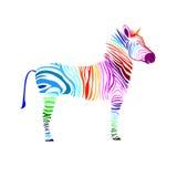 Animal zebra  illustration wild mammal white black zoo str Stock Image