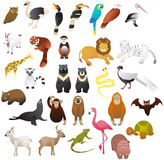 Animal in the zoo. Cartoon animals for the zoo vector illustration