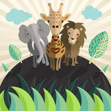 Animal zoo vector. Icon logo illustration Royalty Free Stock Images