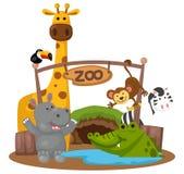 Animal zoo vector Stock Photos