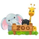 Animal zoo vector Royalty Free Stock Image