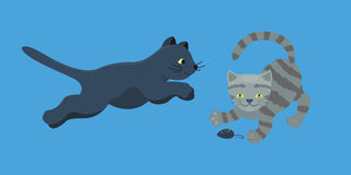 Animale adorabile lanuginoso del fumetto del gattino della razza del gatto del ritratto grigio sveglio dell'animale domestico il  illustrazione di stock