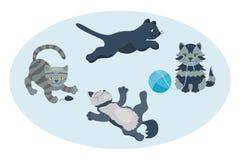 Animale adorabile lanuginoso del fumetto del gattino della razza del gatto del ritratto sveglio dell'animale domestico il giovane illustrazione vettoriale