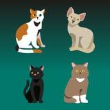Animale adorabile lanuginoso del fumetto del ritratto sveglio dell'animale domestico della razza del gatto il giovane ed il diver royalty illustrazione gratis