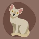 Animale adorabile lanuginoso del fumetto del ritratto sveglio dell'animale domestico della sfinge della razza del gatto il giovan illustrazione di stock