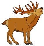 Animale del fumetto - cervo - illustrazione per i bambini Fotografia Stock Libera da Diritti