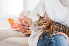 Animale dell'essere umano di comunicazione di amicizia del proprietario dell'animale domestico fotografia stock
