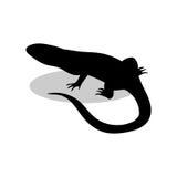 Animale della siluetta del nero del rettile della lucertola Fotografie Stock Libere da Diritti