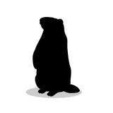 Animale della siluetta del nero del roditore della marmotta Fotografia Stock
