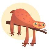 Animale di bradipo del fumetto, illustrazione dell'animale di vettore fotografia stock