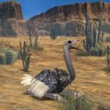 Animale di Ostrich-3D royalty illustrazione gratis