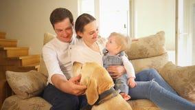 Animale domestico perfetto del cane di carezza del padre e del figlio della madre della famiglia a casa Colpo tenuto in mano video d archivio