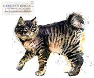 Animale domestico domestico razza della serie dei gatti Gattino sveglio illustrazione di animale domestico dell'acquerello royalty illustrazione gratis