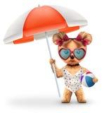 Animale in ombrello e beach ball della tenuta della maglietta Fotografia Stock