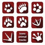 Animale piano dell'icona Fotografie Stock