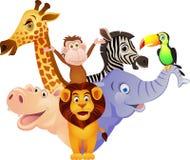 Animale selvatico divertente Fotografia Stock Libera da Diritti