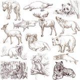 Animales 1 Fotografía de archivo libre de regalías