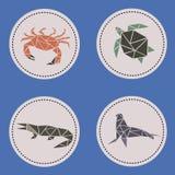 Animales acuáticos del triángulo Fotos de archivo